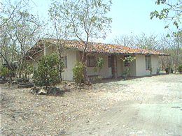 Adobe Staff House